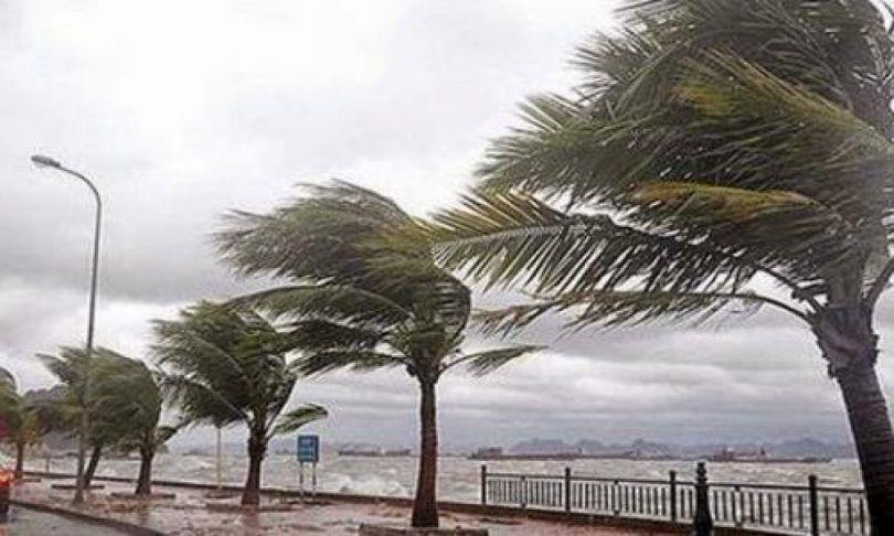 الأرصاد الجوية تحذر من هبوب رياح قوية على 10 ولايات ساحلية